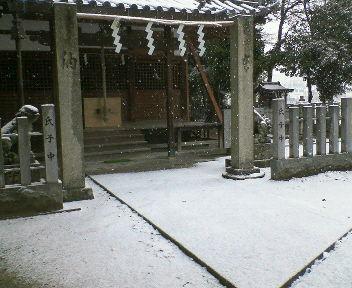 雪やこんこん♪