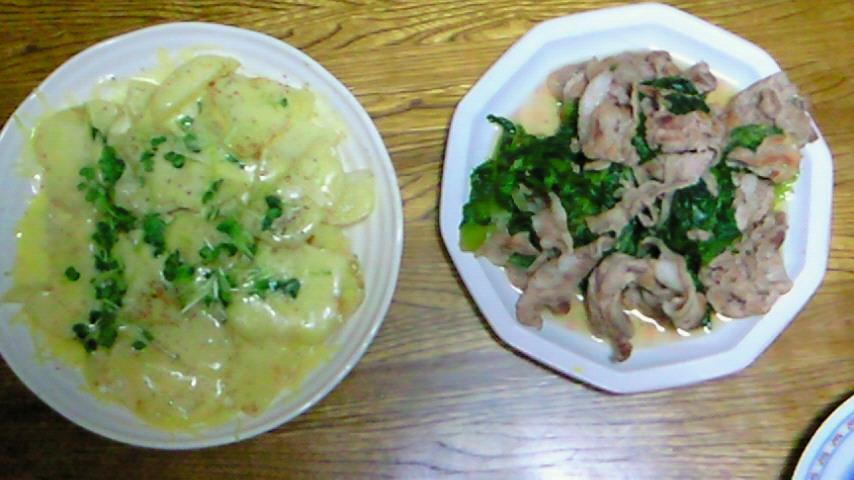 昨日作ったご飯です